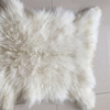 /product-detail/well-designed-tibet-sheep-fur-material-goat-skins-soft-lamb-blanket-60738204497.html