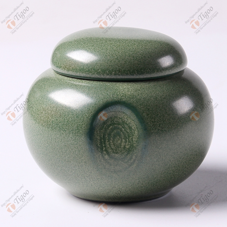 TG-602J01-G-SS Plastic pet urn for ashes with no paw print online adult application New design metal material antique urns