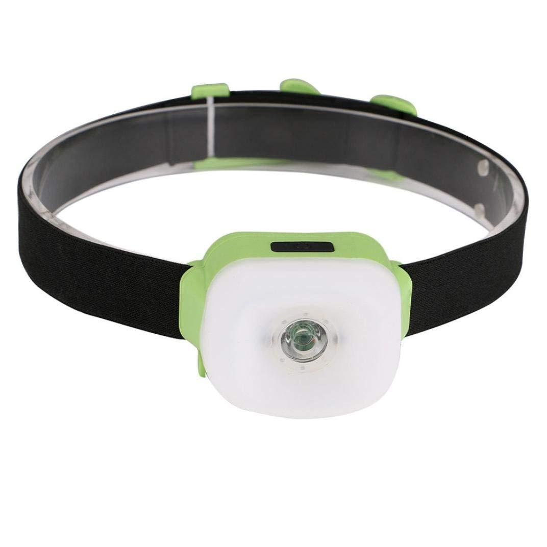 19 LED Headlamp Green Head Light Lamp Torch Grow Room Hydroponics Plant Camping