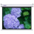 SNOWHITE 84'' 4:3 Luxury electric Screens aluminum housing case suitable for business education