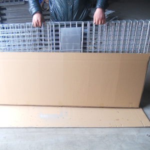 Rital Fox , Coyote , hyena , Wild boar , dog animal trap cage