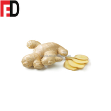 Indonesian fresh ginger wgolesale root price, buyer of dry ginger