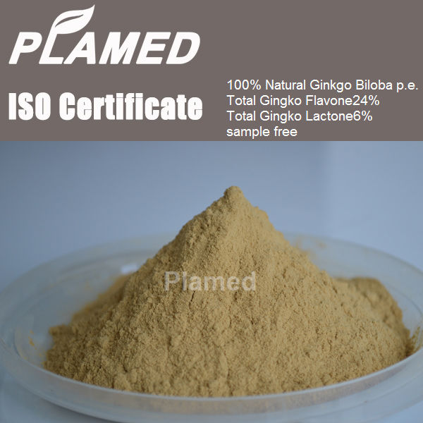Buy ginkgo biloba extract 24/6% water soluble5% powder,raw material ginkgo biloba extract 24/6% water soluble5%