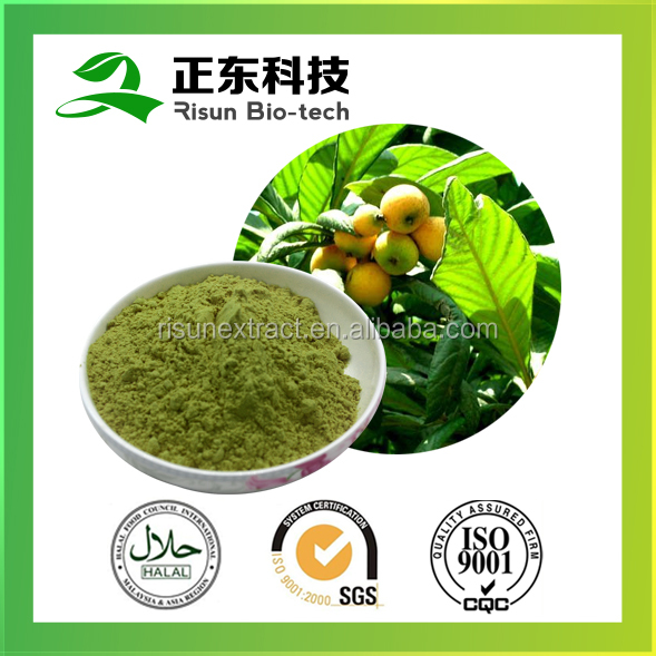 Ursolic Acid 25% Loquat Leaf Extract