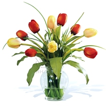 Real Touch <span class=keywords><strong>Zachte</strong></span> Latex 5 Heads Champagne Papegaai Witte <span class=keywords><strong>Bloem</strong></span> PU <span class=keywords><strong>Tulp</strong></span> Kunstmatige Tulpenbollen Bloemen voor Decoratie