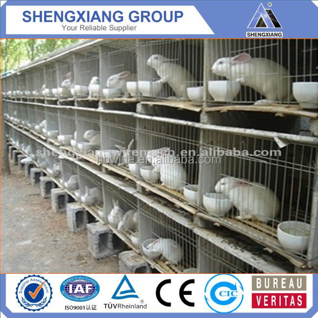 Metal cheap commercial wholesale rabbit cage breeding / rabbit farming cages