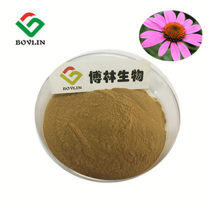 Manufacturer Supply echinacea purpurea extract Phenolic Compounds Phenolic acid