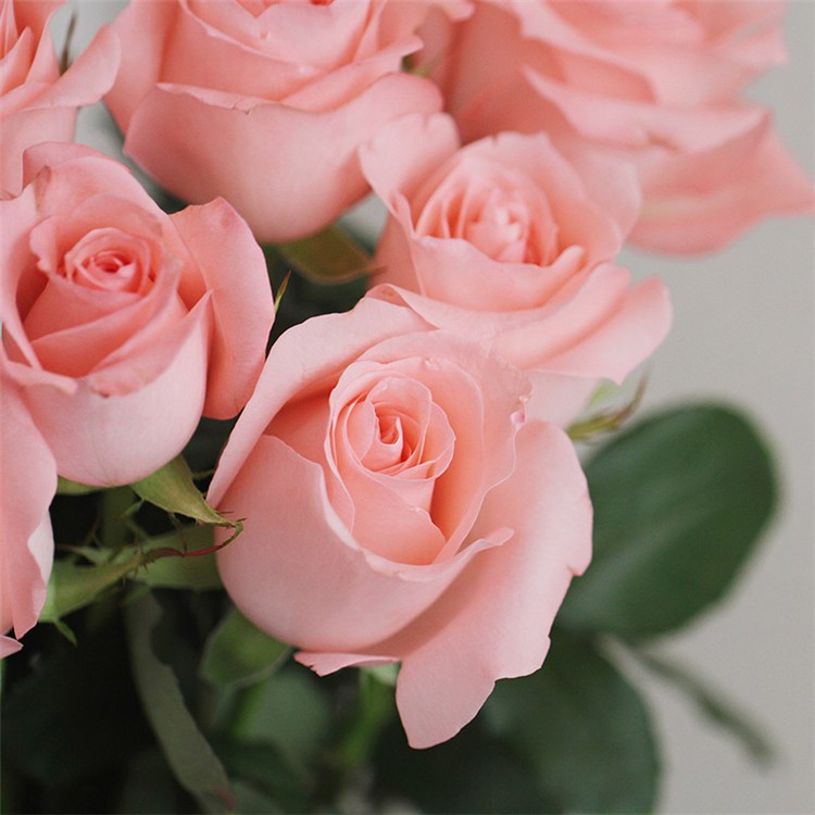Beautiful pink rose wedding flower made in china buy wholesale pink color rose are very popular in design different types of decoration many of ornamental plants china flowers are design in wedding decoration mightylinksfo