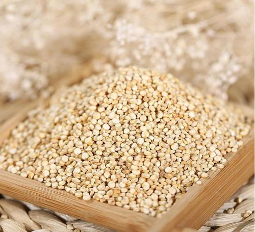 High Quality Common White Quinoa, Cereal <strong>Grain</strong>
