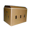 vegetable packaging box /wax carton box for bell pepper carton boxes