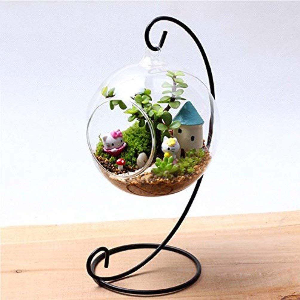 Cheap Diy Plant Terrarium Find Diy Plant Terrarium Deals On Line At