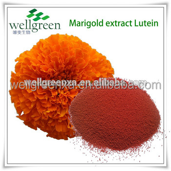 natural lutein powder from annual herb marigold with best price