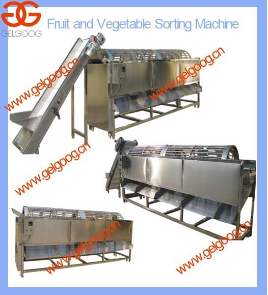 Machine for Onion and Potato Grading| Machine for Vegetable Washing and Sorting Machine |Onion Use Cleaning and Grading Machine