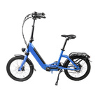 New Product in Europe LCD meter 250w 36v 20 inch folding electric green city bike bicycle with 10.4Ah Li-ion battery