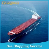 High competitive ocean freight to Jebel Ali--skype:colsales20
