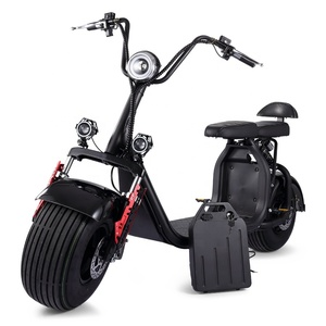 2 wheel electric standing scooter adult electric scooter 1500W citycoco scooter with removable battery X7