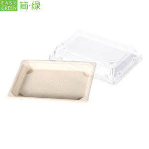 Easy Green biodegradable disposable sugarcane frozen dumpling snack food sushi paper packaging box with lid