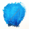 18-20in/45-50cm Gold Supplier Wholesale Cheap Promotional Ostrich Plume Feathers for Carnival