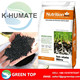 Potassium humate granular/humic acid 60%/soluble organic fertilizer