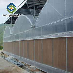industrial film greenhouse with hydroponic systems used for sale