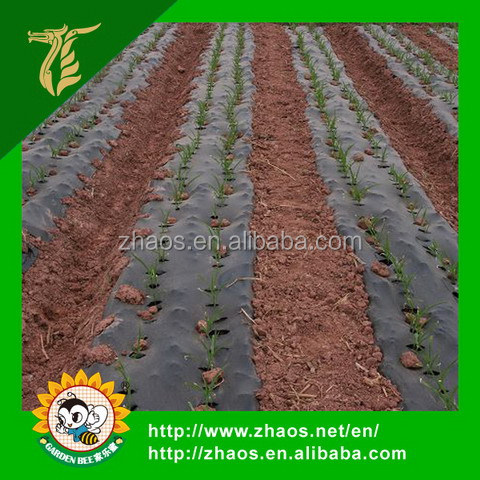 Manufacture agriculture or gardening use PBAT Biodegradable Mulch Film