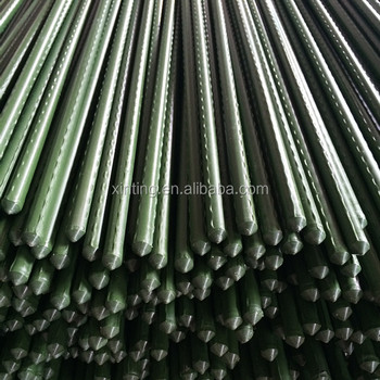 Pe Coated Steel Garden Stake
