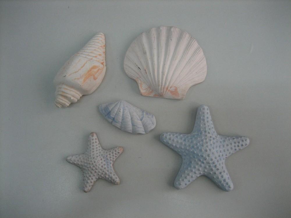 Poroso aroma stelle marine conchiglia di pietra profumato di