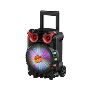 Private mould speaker portable 8 inch trolley speaker with disco light