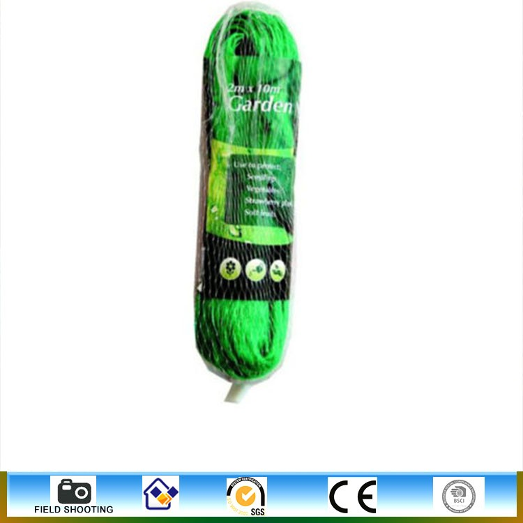 Hot Sale Bird Trapping Net Good quality Bird Netting