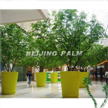 Boom In Pot Tuin.Grote Big Size Bloempot Voor Boom Buy Bloempot Tuin Pot Big Size Bloempot Product On Alibaba Com
