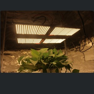 HLG 550 V2 Samsung lm301b led grow light 288 quantum board grow tent kits for indoor plants