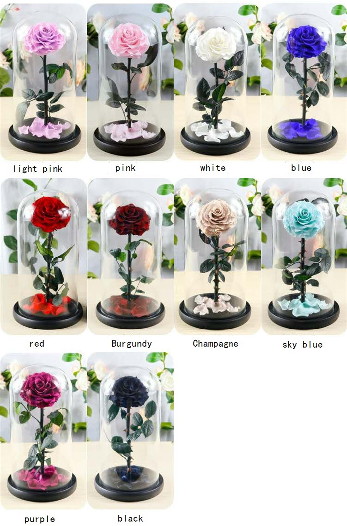 2019  Eternal Preserved Rose Natural New Flower Box For Mother's Day Gift