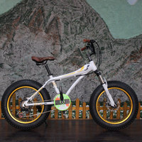 2017 new coming wholesale steel frame dirt bike for sale cheap 20inch fat tire bikes bicycle