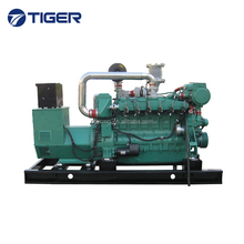CE approved 200kw 250kva biogas powered electric generator with 6126 engine