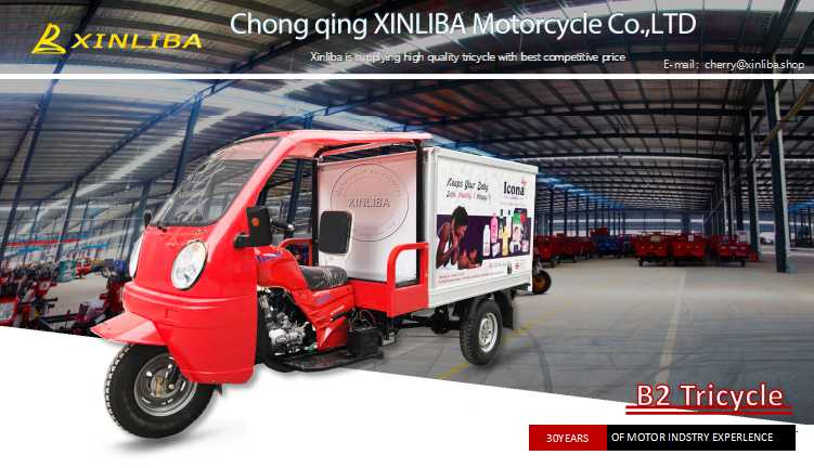 three wheel electric cargo disabled vehicle dumper motorcycle