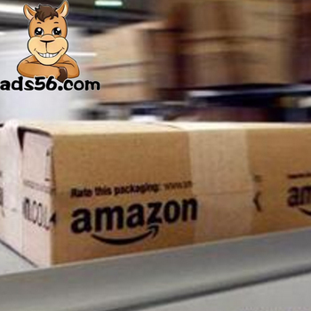 FBA Amazon Logistics Cheap Door to Door Air Freight from China to USA/Europe--Skype:mag.hao