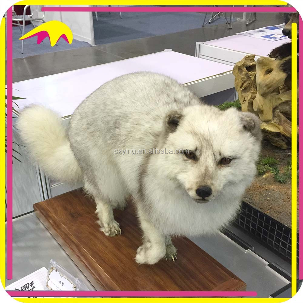 KANO0978 Exhibition Decoration Realistic Life-Size Animated Dire Wolves