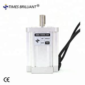 Hot Sales 48V 500W 4500rpm Brushless dc Motor