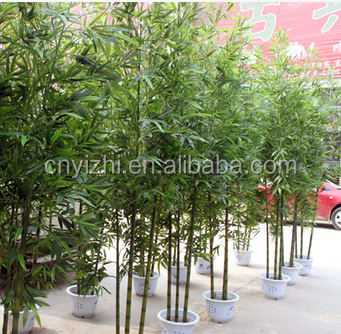 Yzp000080 pianta di bamb artificiali ingrosso di alta for Pianta bambu prezzo