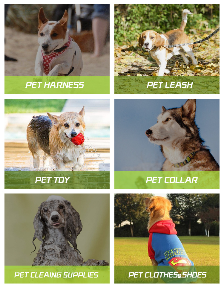 Светоотражающие печатных собака жгут неопрен