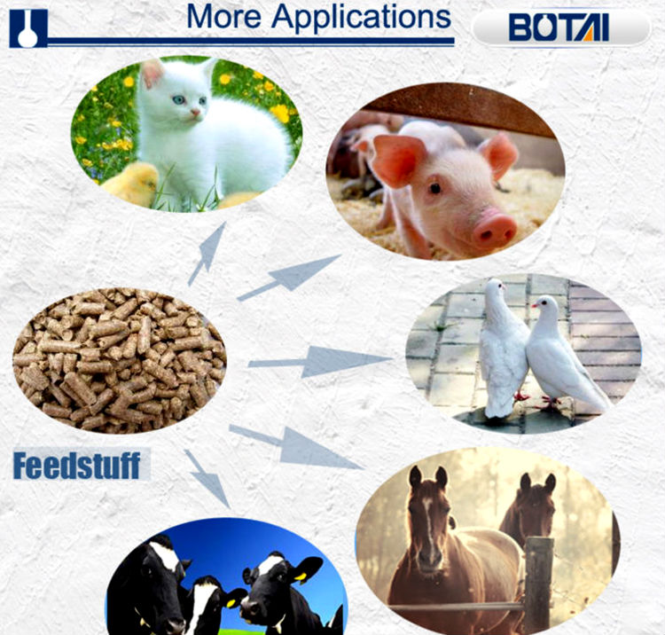 feed additives good quality with competitive price calcium formate