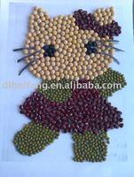 Soybean/soya bean, soy soya bean seeds( 2011crop, heilongjiang origin)