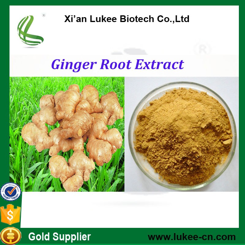 China Suppliers Black Ginger Root Powder,10:1 Red Ginger Root ...