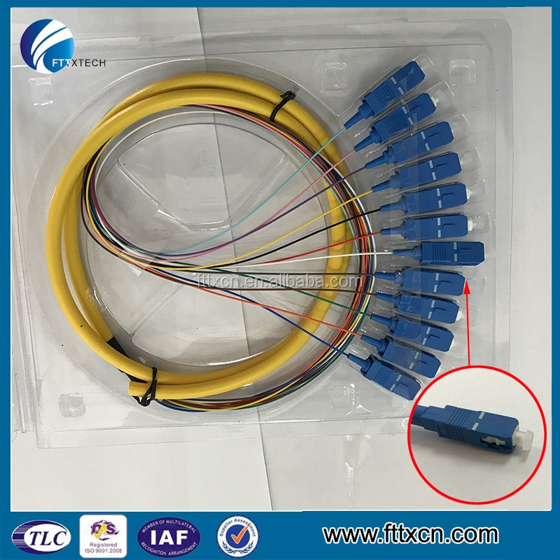 Good Quality Outdoor or Indoor 12 Cores Fiber Optical SC APC Pigtail for FTTH use