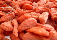 China Ningxia organic dried goji berries - grade 200