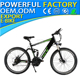 "2017 New 26' 'Mountain Electric Bicycle with Double connecting rod suspension wholesale e-bike LL26""-NEW"