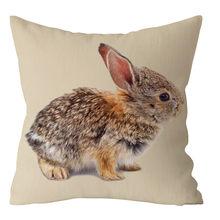 Наволочка с рисунком пасхального кролика диван из полиэстера домашний Декор автомобиля Cojines Decorativos para Sof декоративные подушки(Китай)