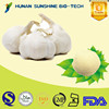 Manufactures Pharmaceutic Ingredient Loss Weight Garlic Powder