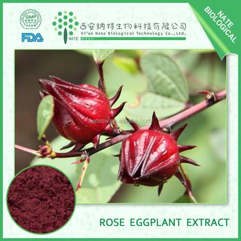 China Factory manufacture Rose Eggplant Pigment Powder 25%