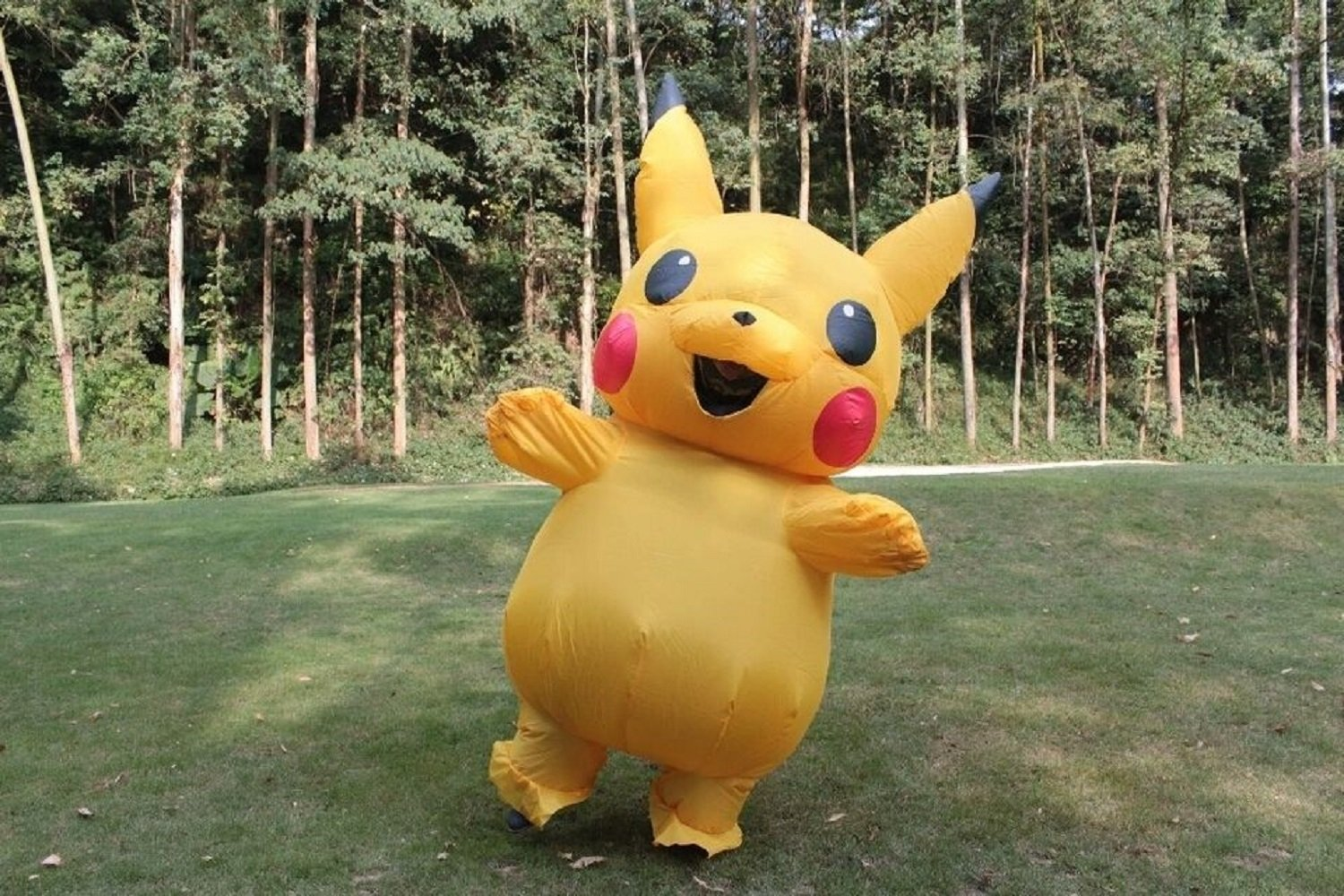 cheap baby pikachu costume, find baby pikachu costume deals on line